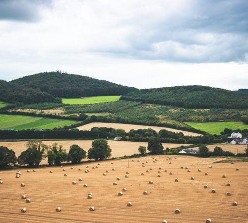 Field Nutrient management software